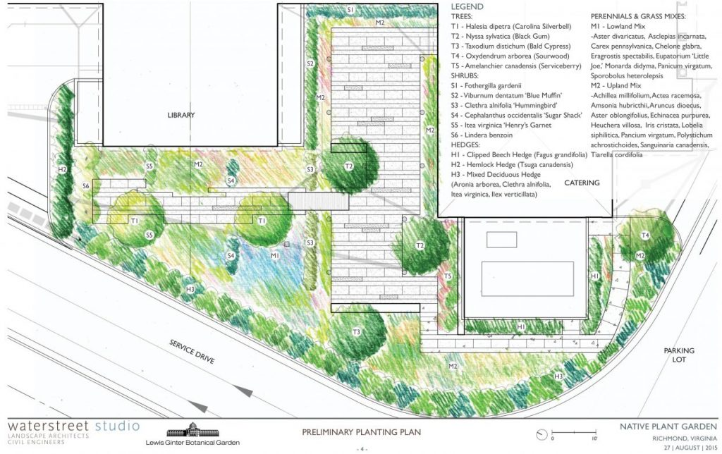 morton native plant garden schematic from waterstreet