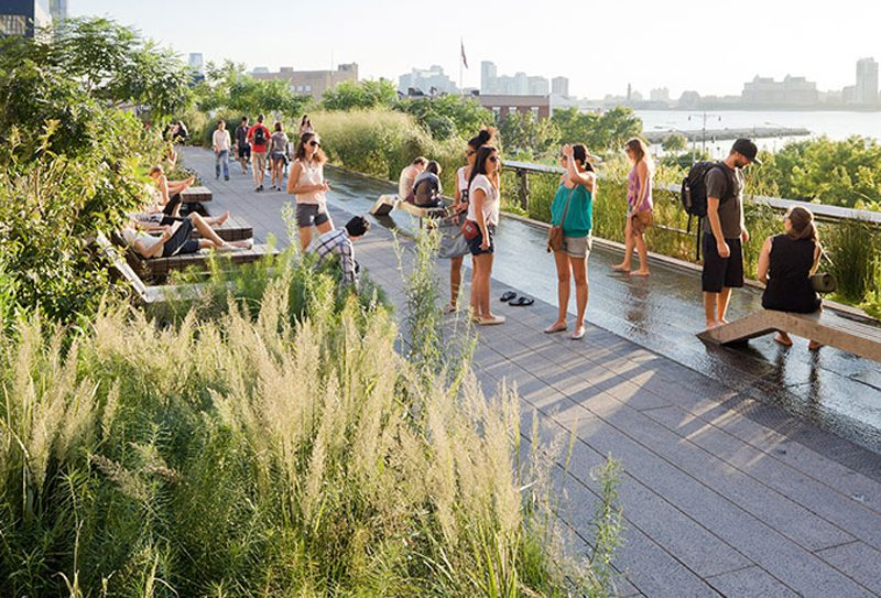 Image of New York City's High Line from their website - Public Gardens