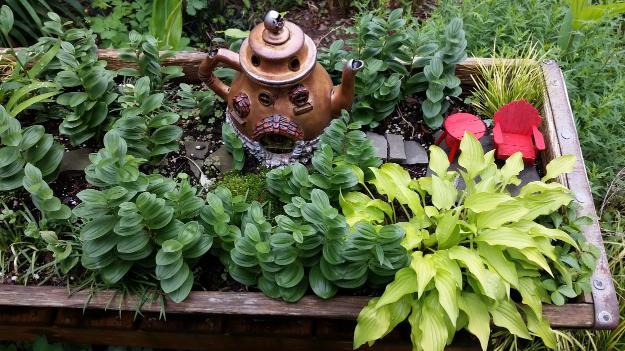 Container plantings like this discarded pig trough was filled with plants and accessories as a fairy garden.