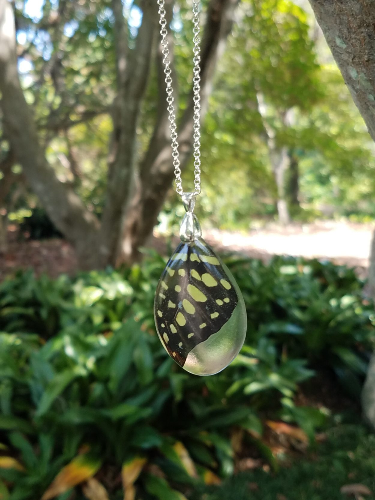 Yellow Malachite butterfly wing encased and resin pendant and displayed on a silver chain