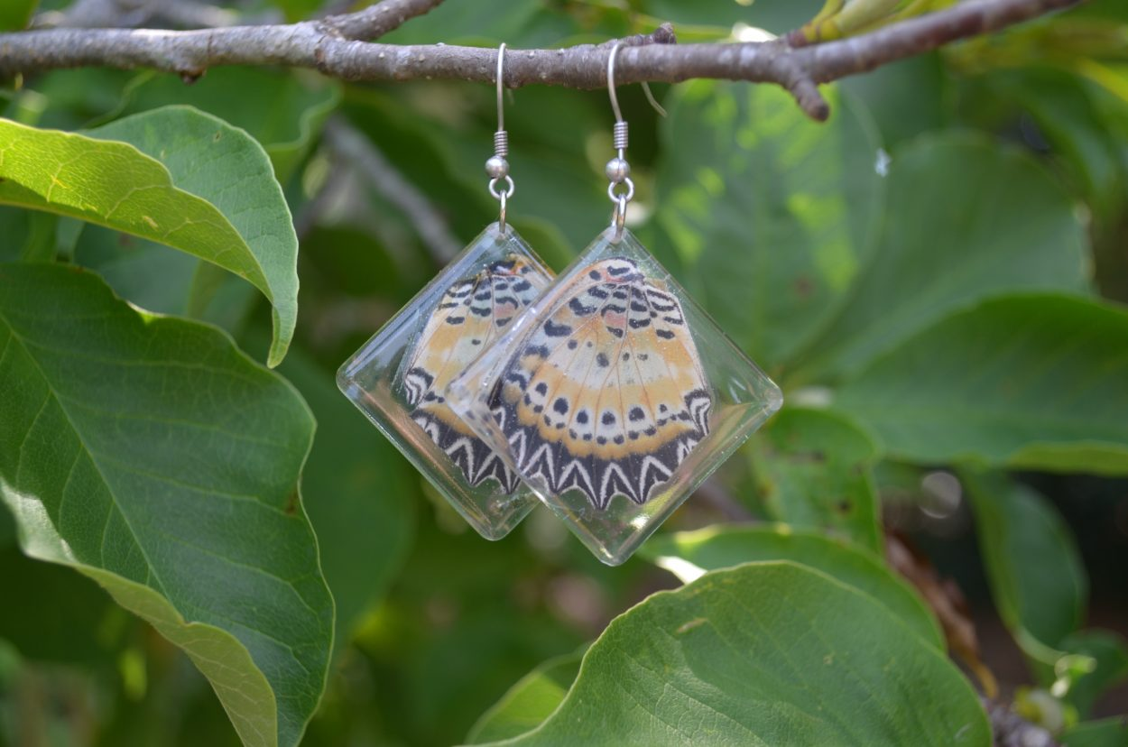 The black and orange wings of Paper Kite butterfly are encased in square-shaped resin earrings.