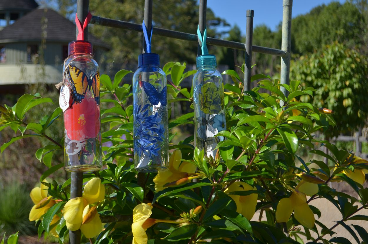 Cypress Refresh Water Bottles Available at Cheers to Shopping in the Garden Shop