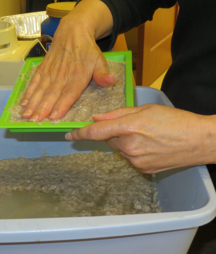 Making paper from plant fibers