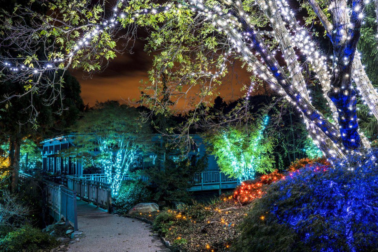 Gardenfest illumination - Garden of lights botanical gardens ...