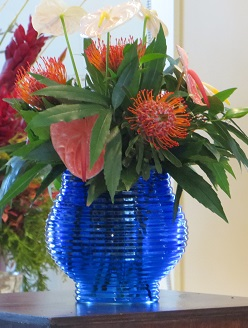 Tropicals for Winter with David Pippin