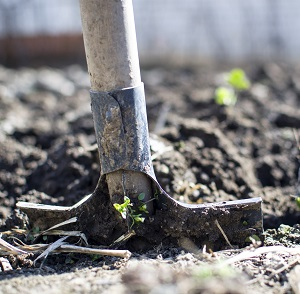 soils pH and fertilization