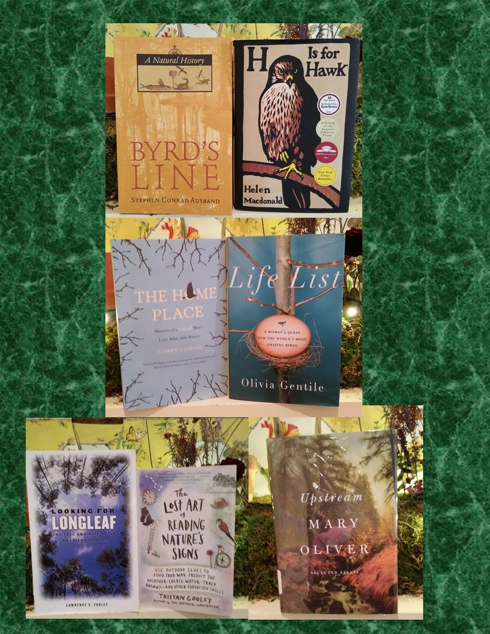Lewis Ginter book club selections including H is for Hawk, Life List, Byrd's Line, The Home Place, Upstream and many more.