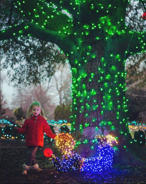 Girl standing under The Giving Tree, winning image of the Dominion GardenFest Instagram Contest for 2018.
