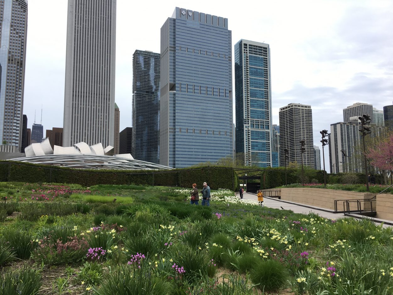 Perennial Gardens And Their State Of Constant Change