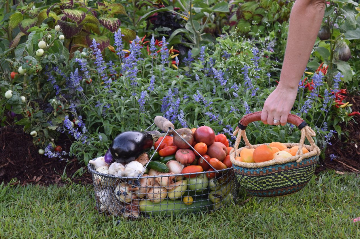 Foodscaping Tips From Brie Arthur From Lewis Ginter 39 S Winter Symposium