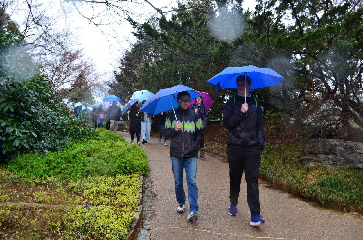 Boys walking in the rain at the garden