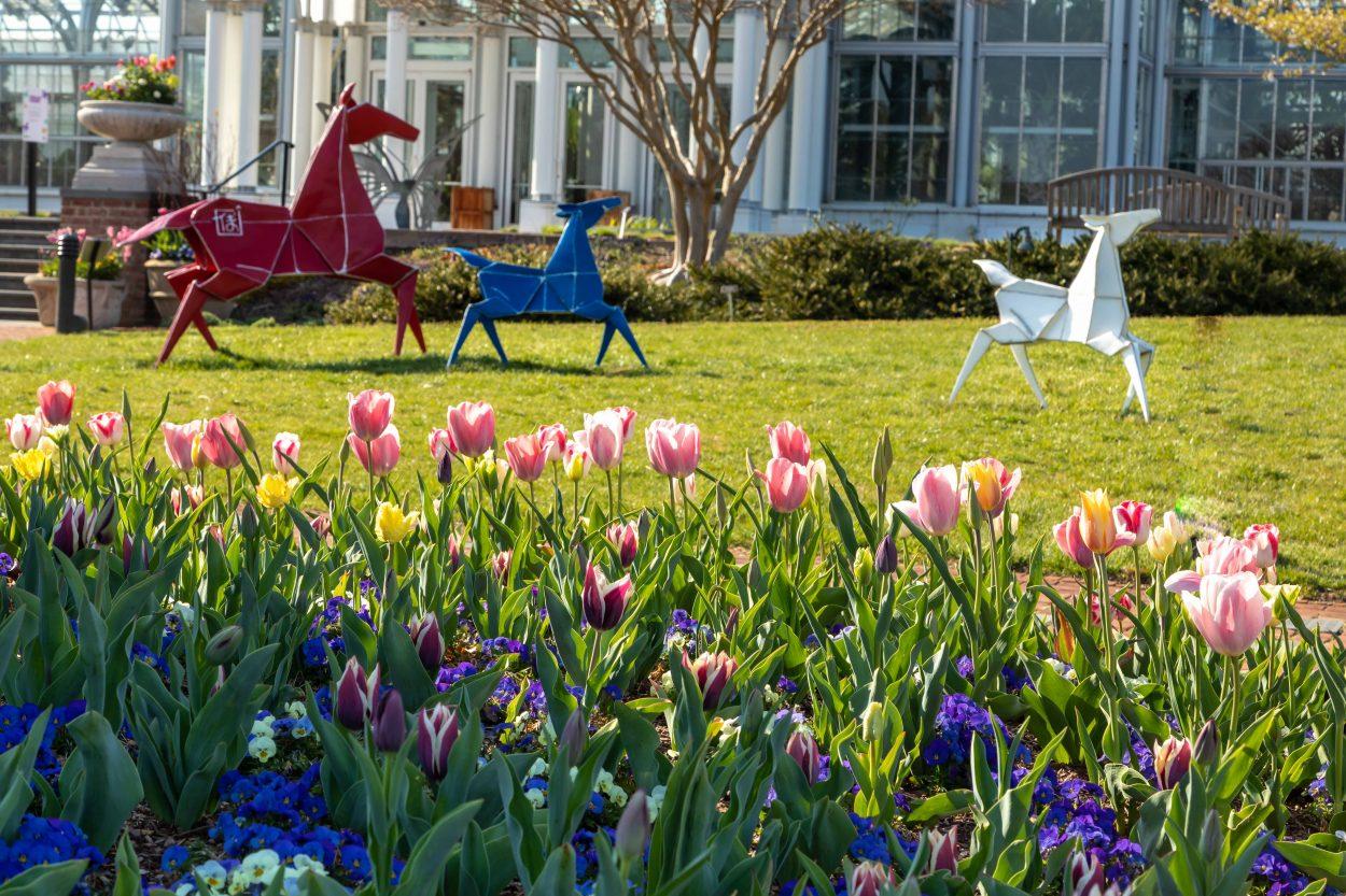 Origami in the Garden - Lewis Ginter Botanical Garden - photo#4