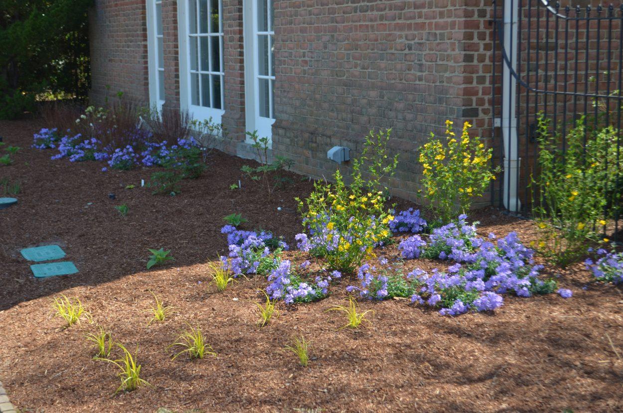 Renovations At Lewis Ginter Botanical Garden Spring 2018