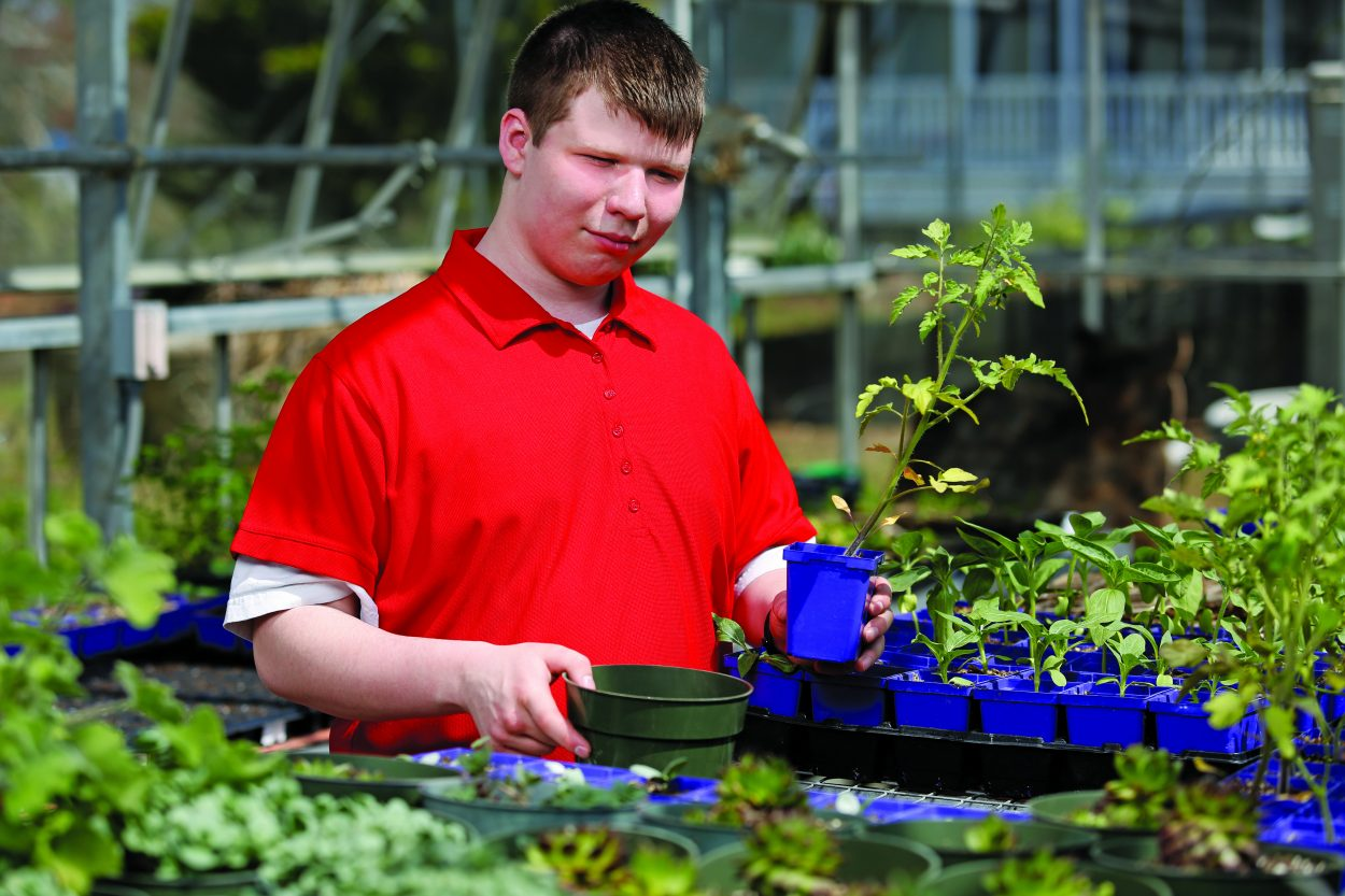 Tristin Compton works with plants as an internship