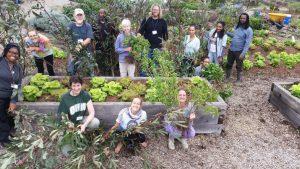 Ginter Urban Gardeners