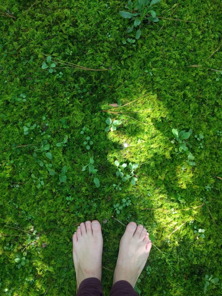 Image of two white feet on a bed of green moss that takes up the entire frame.
