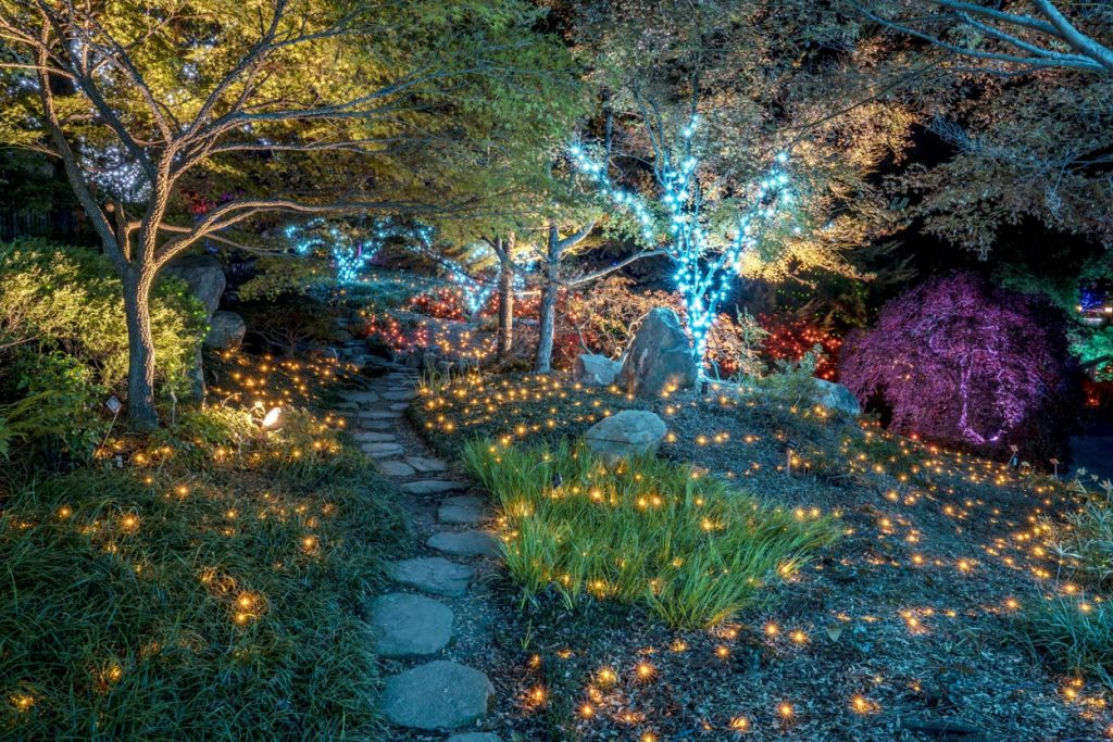 Dominion Energy GardenFest of Lights. by Don Williamson