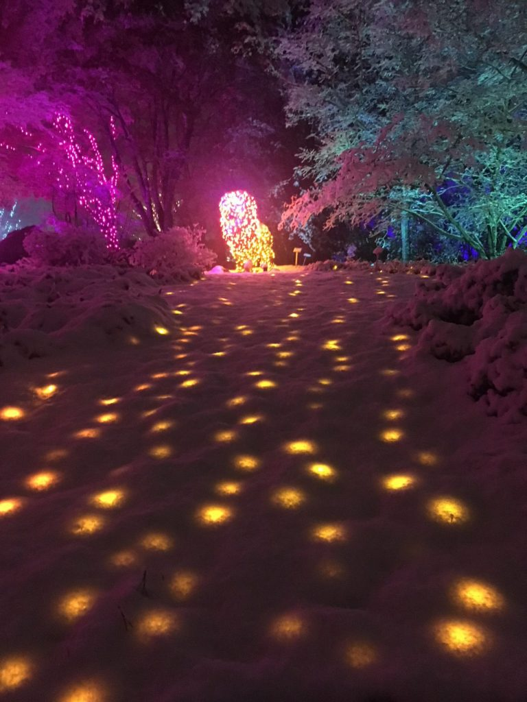 GardenFest of Lights in the snow. Image by Kristen Brown
