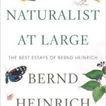 "Book cover for ""A Naturalist at Large: The Best Essays of Bernd Heinrich"" showing a number of butterflies, eggs, leaves, and a yellow and black bird"