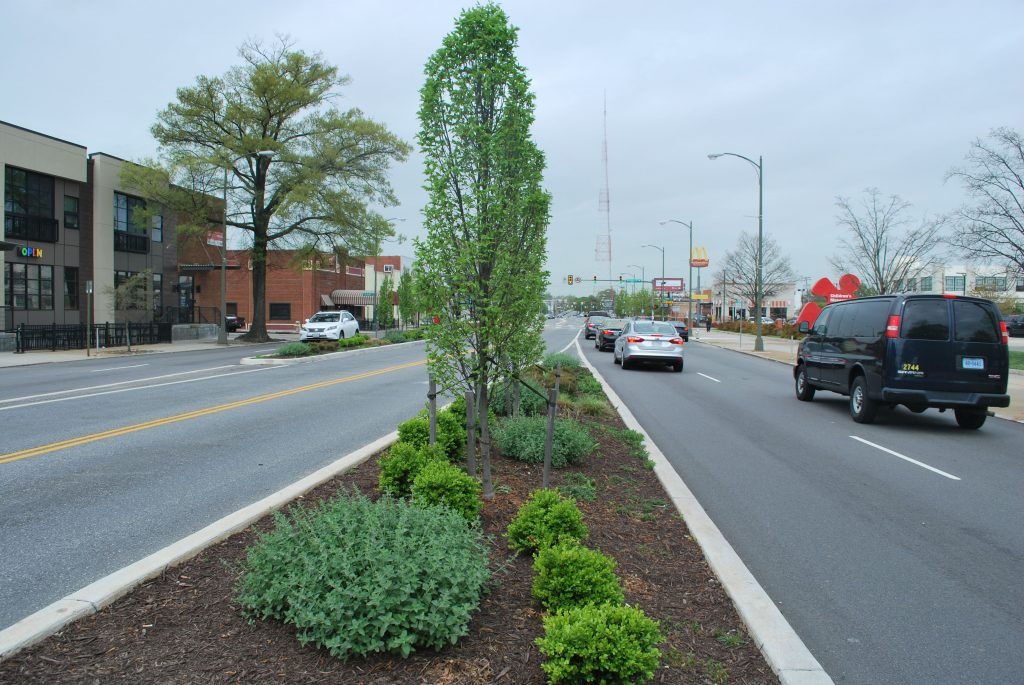 trees and shrubs grow at a bus platform on the GRTC Pulse route.