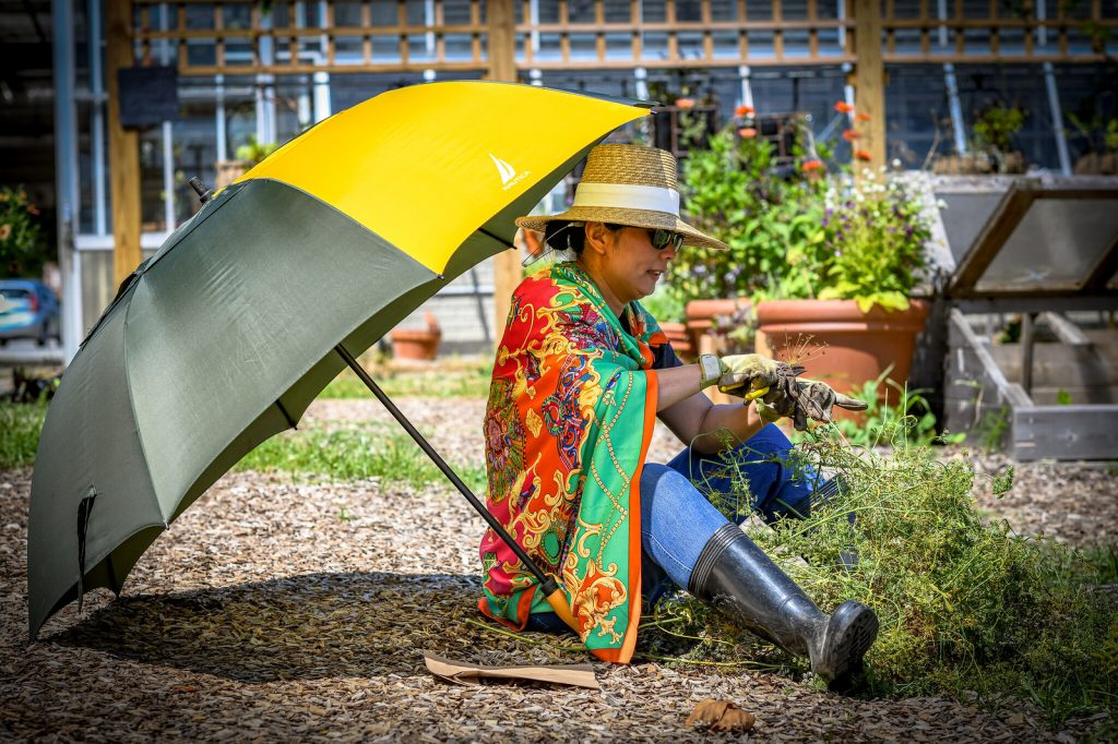 Woman gardening with yellow umbrella.
