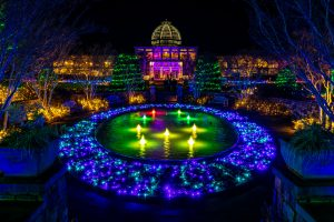 The Conservatory in blue and pink lights during Dominion Energy GardenFest of Lights