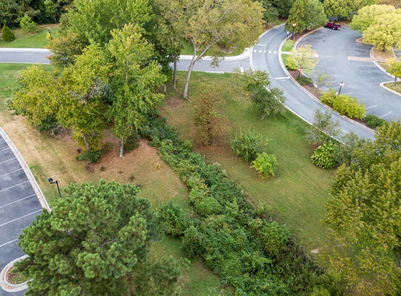 Aerial of Glen Stream Restoration -- which will be a future site of environmental education. by Harlow Chandler