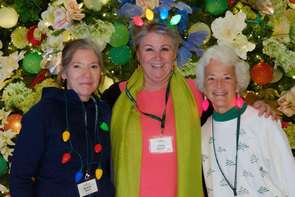 Three volunteers. Image by Harlow Chandler