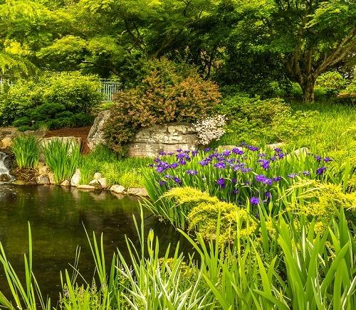 Gardening and Garden Design Classes Lewis Ginter Botanical Garden