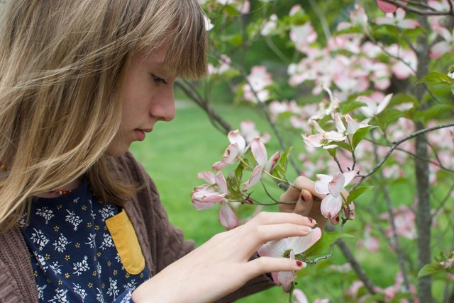 Girl looking at a dogwood tree. The value of trees is not just determined by its beautiful blooms. Image by Mitra Bryant