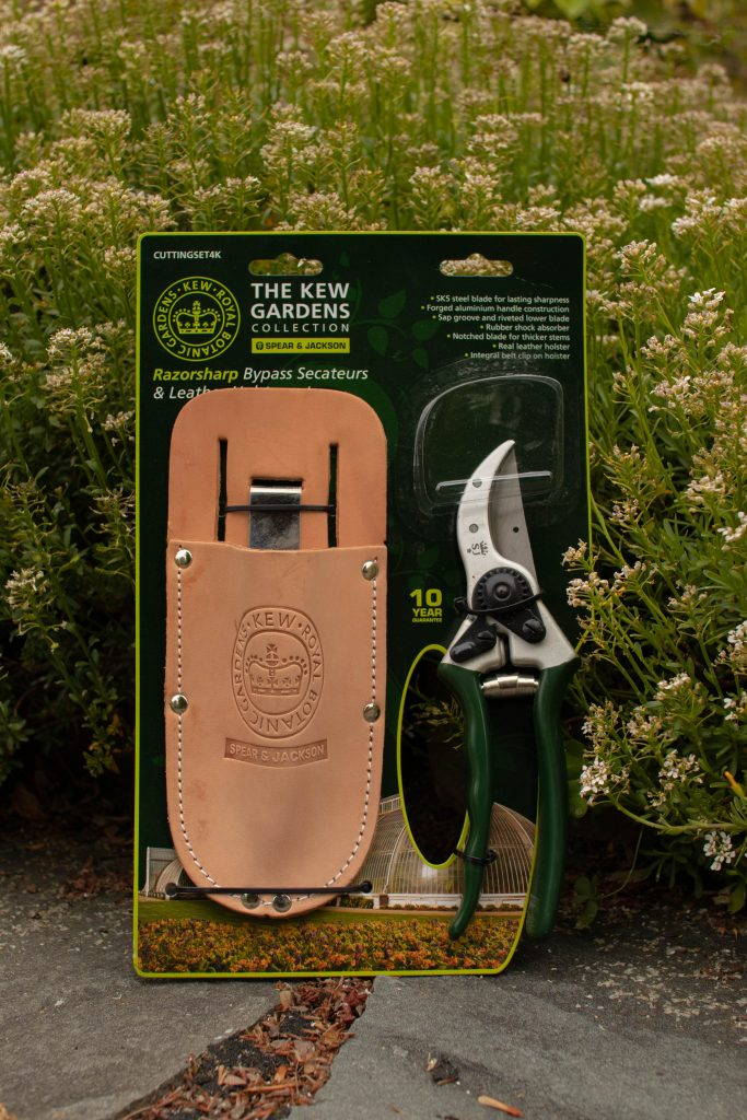 pruner and holster set in front of a shrub with little white flowers