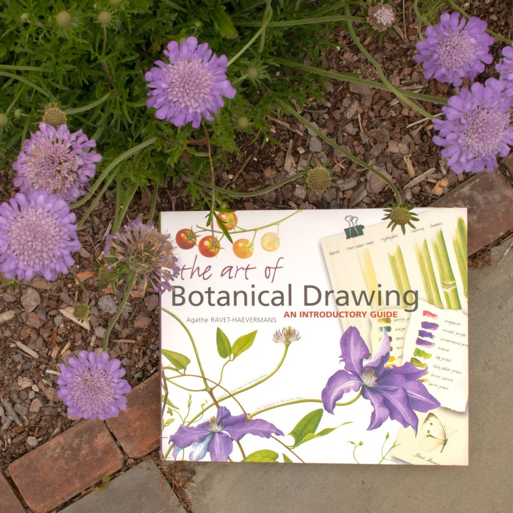 "Book, ""The Art of Botanical Drawing"" on the ground, with purple flowers around the top and left side"