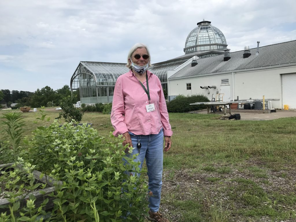 Volunteer Elaine Loomis and the Conservatory standing by the mountain mint.