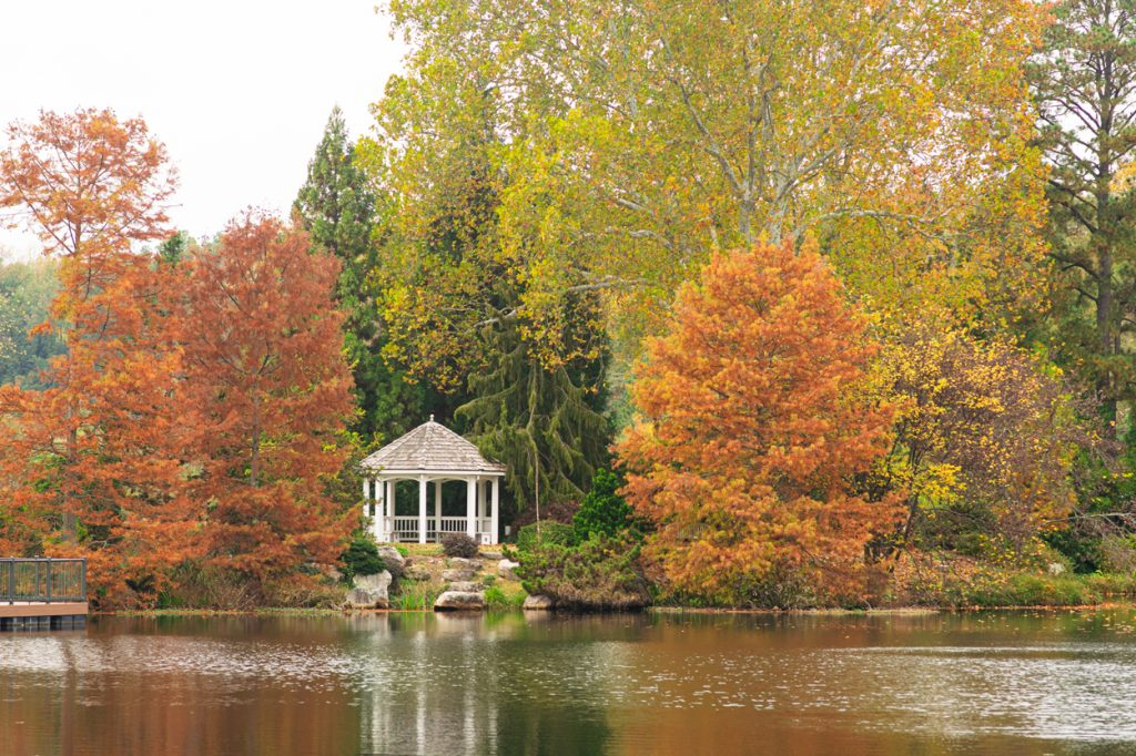 fall at Lewis Ginter Botanical Garden. Image by Nicole Plummer