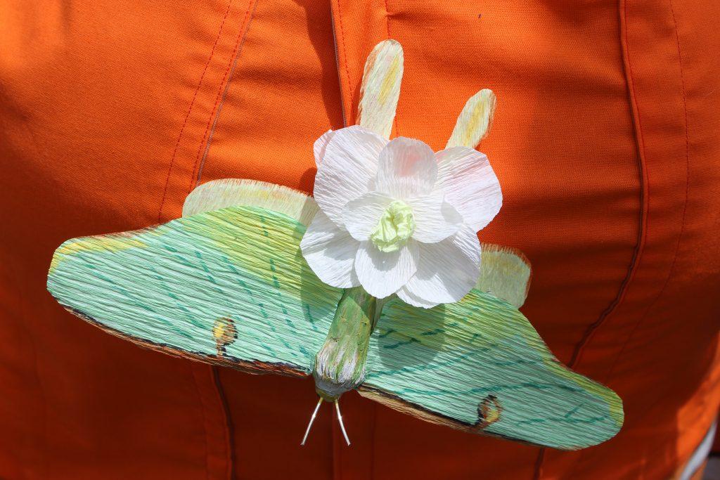 Luna moth by artist Unicia Butler