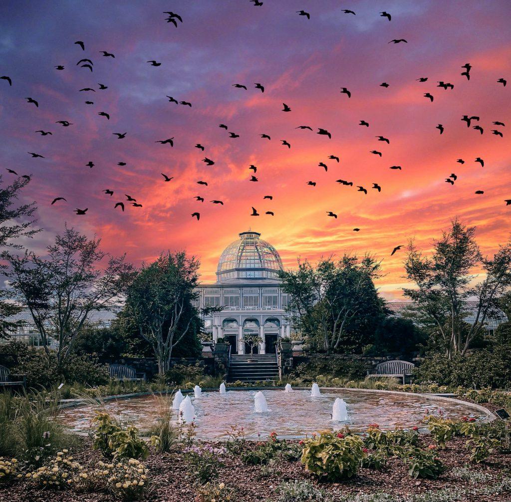 Sunset at Wednesdays Alfresco. Image by by J Veliz