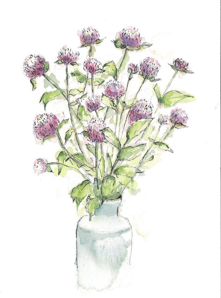 purple clover-like flowers in watercolor by Liz Hambrick