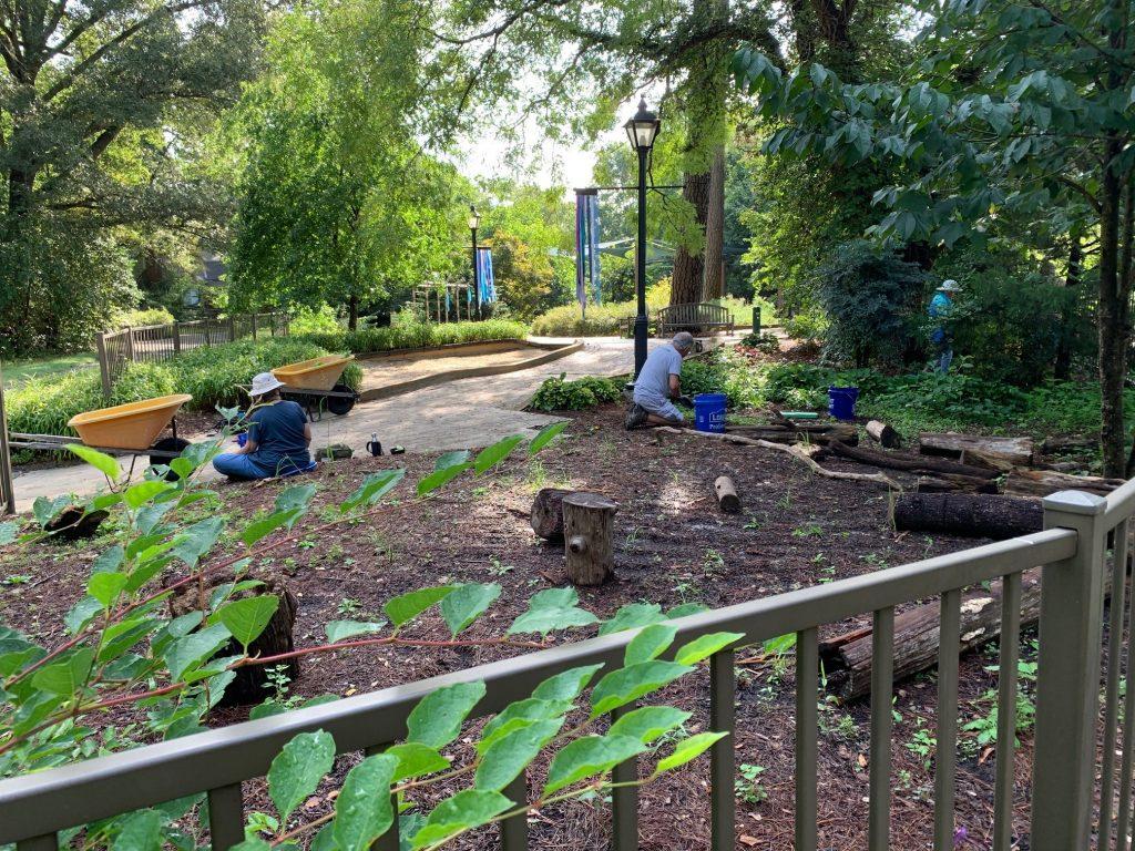 Volunteers weeding in the Children's Garden