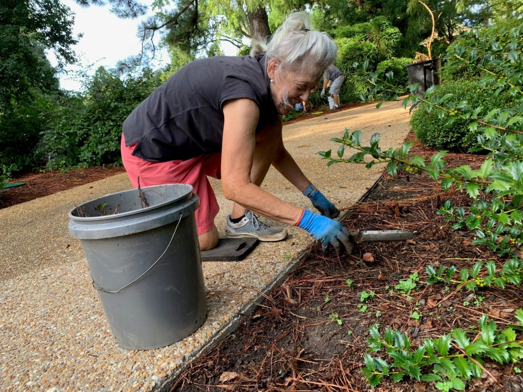 woman weeding with shovel